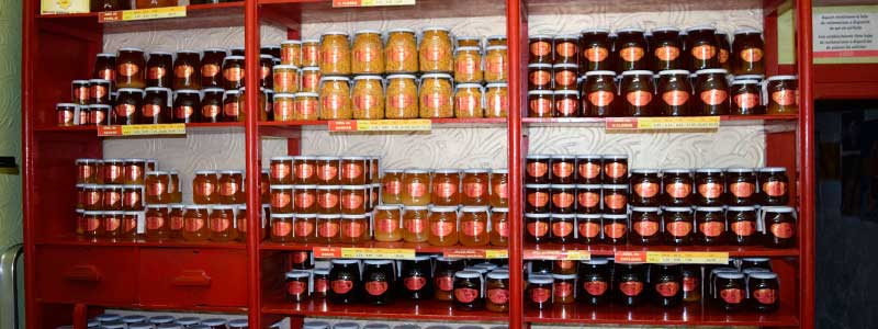 Visit Valencia Like A Local – The Homemade Honey Shop