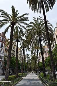 restaurantes en ruzafa el paseo de las palmeras